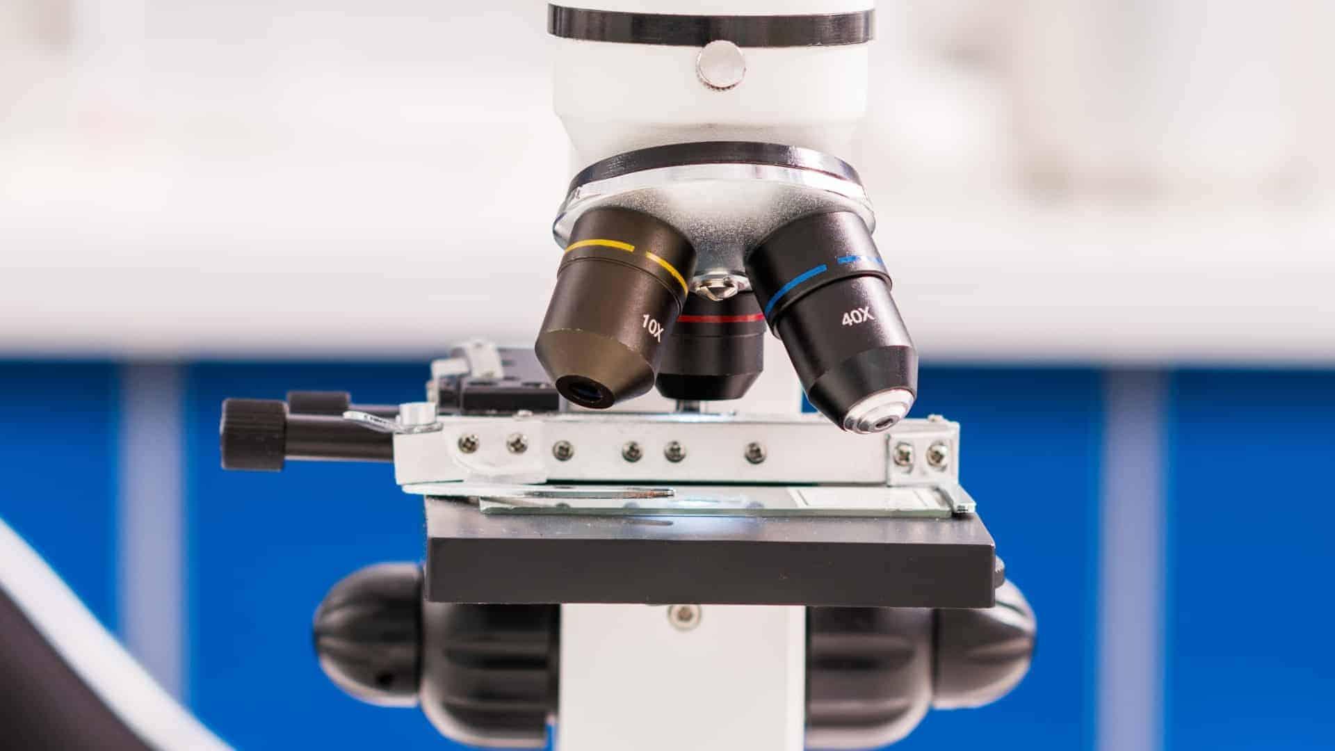 Miglior microscopio 2020: Guida all'acquisto