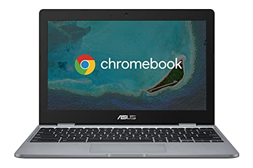 Asus Chromebook C223 Notebook con Monitor 11,6