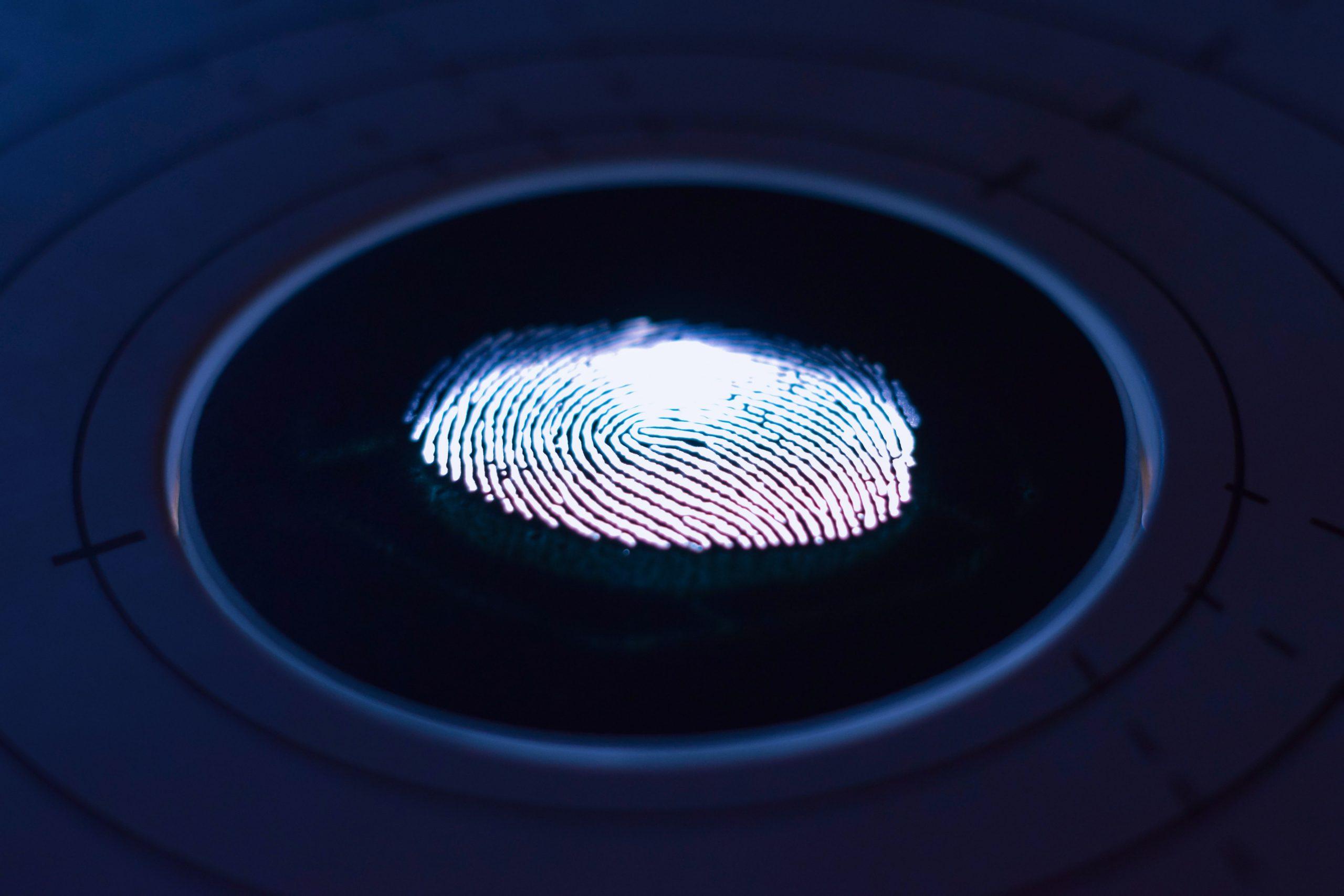 Lettore biometrico: i migliori prodotti (10/21)